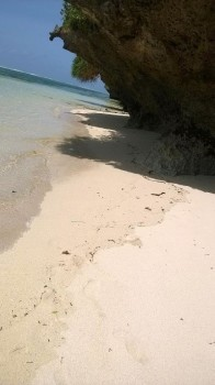 Land for sale on Tiwi Beach, Land for sale on Tiwi Beach