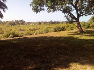 Land for Sale in Diani fronting Kongo River