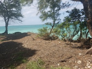 Oceanfront property for sale in Ramisi Kinondo