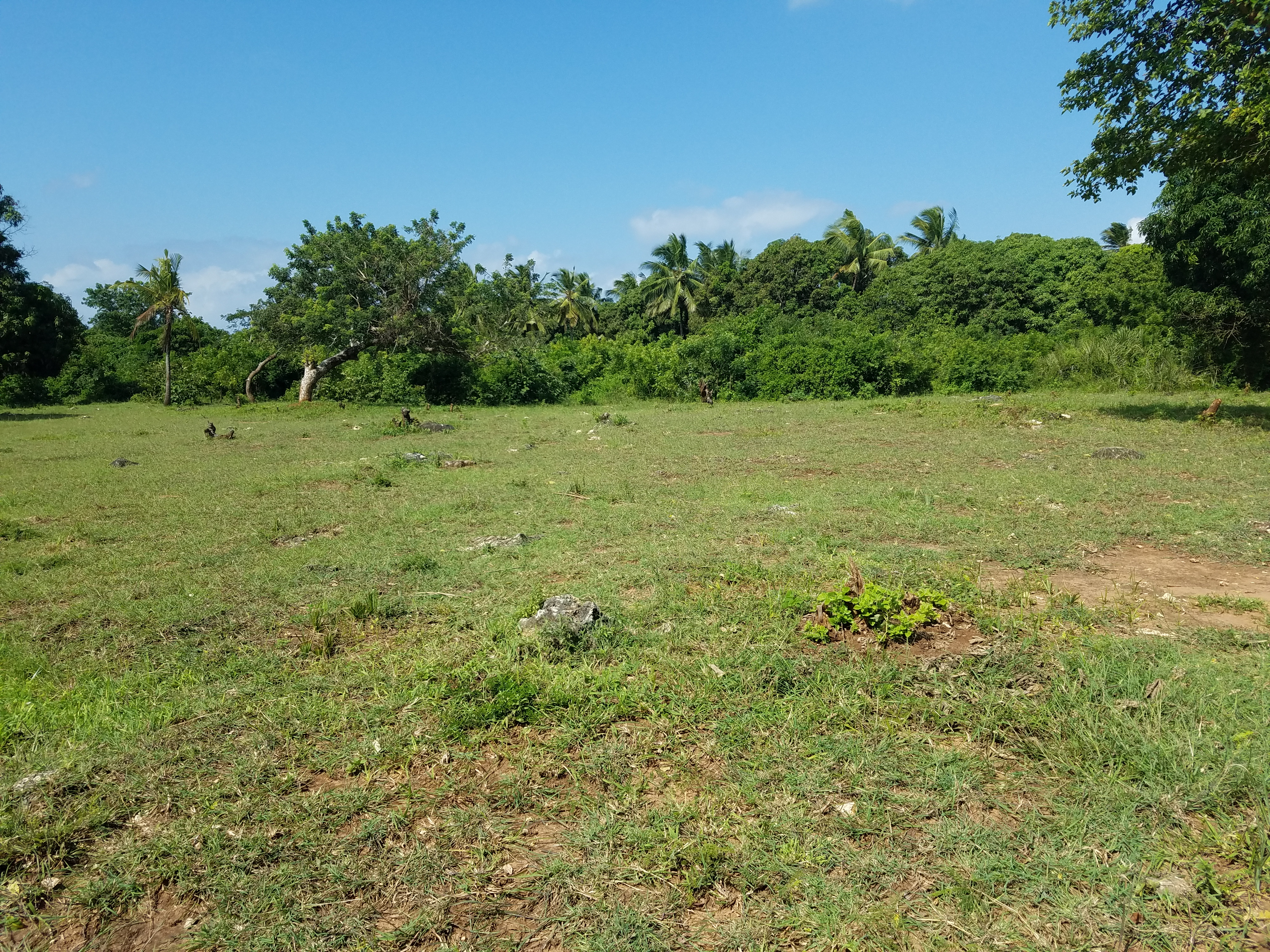 1 Acre Plots for sale in Diani Beach