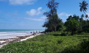 Galu Beach property for sale