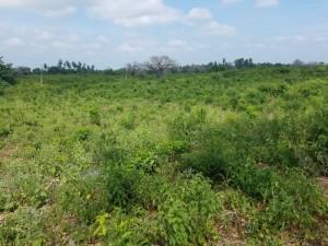 1 Acre Land for sale in Galu Kinondo