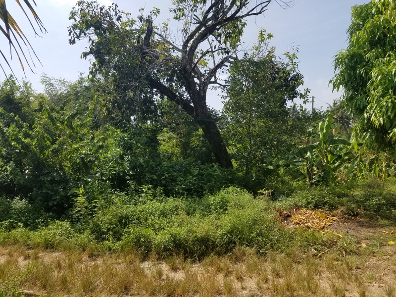 5.2 Acres Land for sale in Galu Kinondo