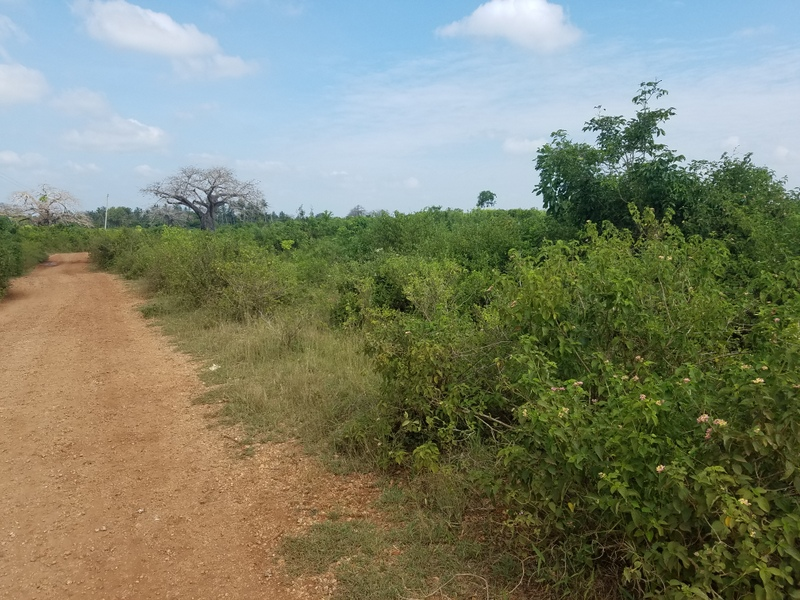 1 Acre Land for sale in Galu Kinondo