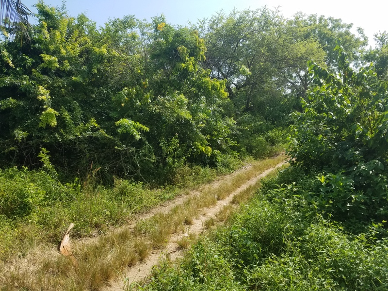 3 Acres Land for sale in Galu Kinondo