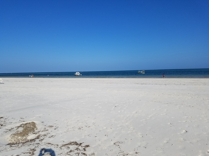 Oceanfront Cottage to let in Diani Galu Beach