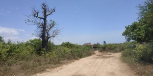 2 Acre Land for sale in Diani 3rd Row
