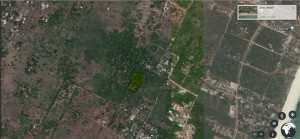 1. Half an Acre plot of land for sale in Diani Beach Kenya