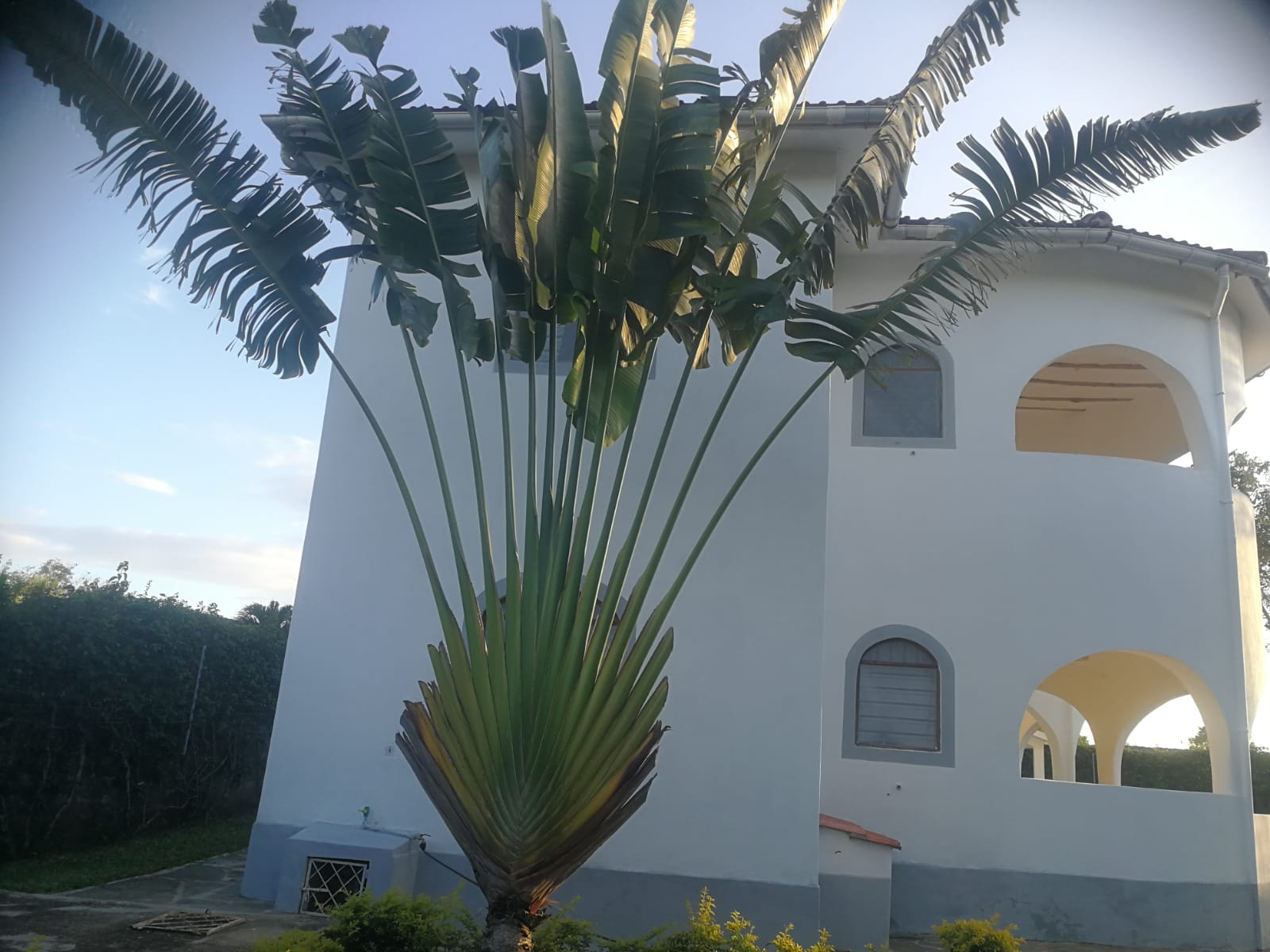 Property for sale in Diani Beach near Ukunda Airstrip