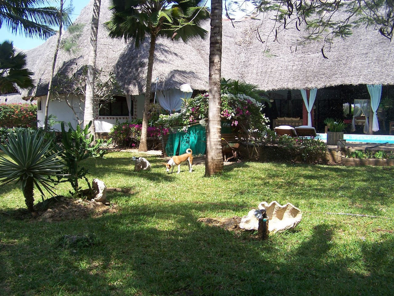 4 Bedrooms House for sale in Diani