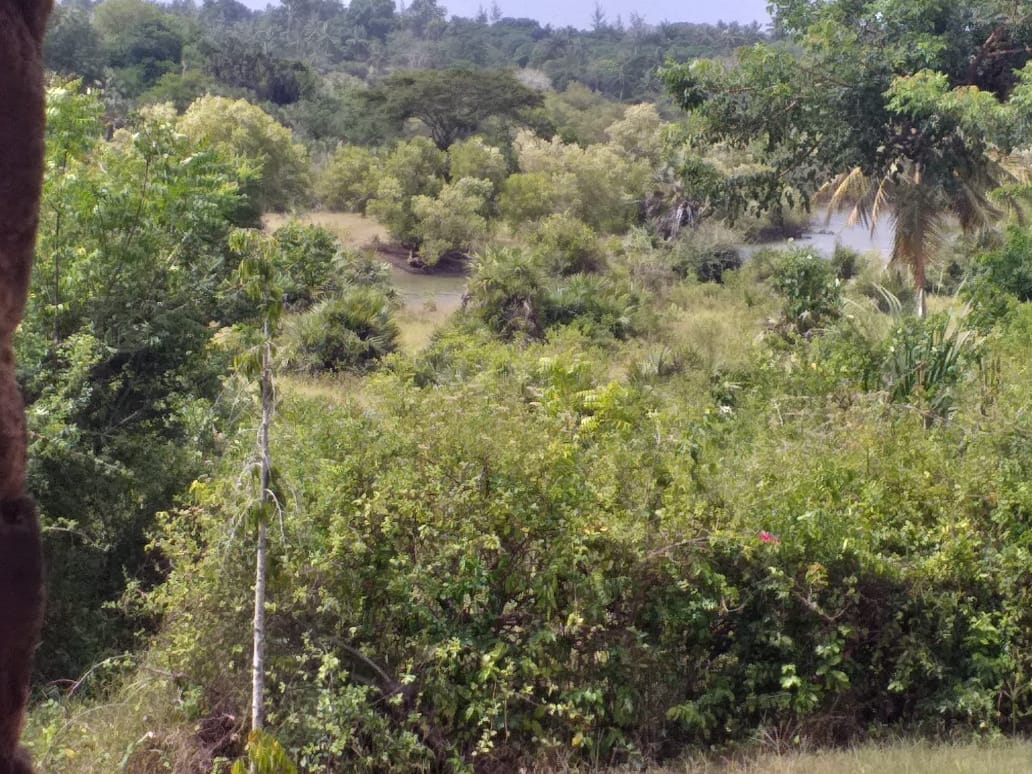 4 Bedrooms House for sale in Tiwi