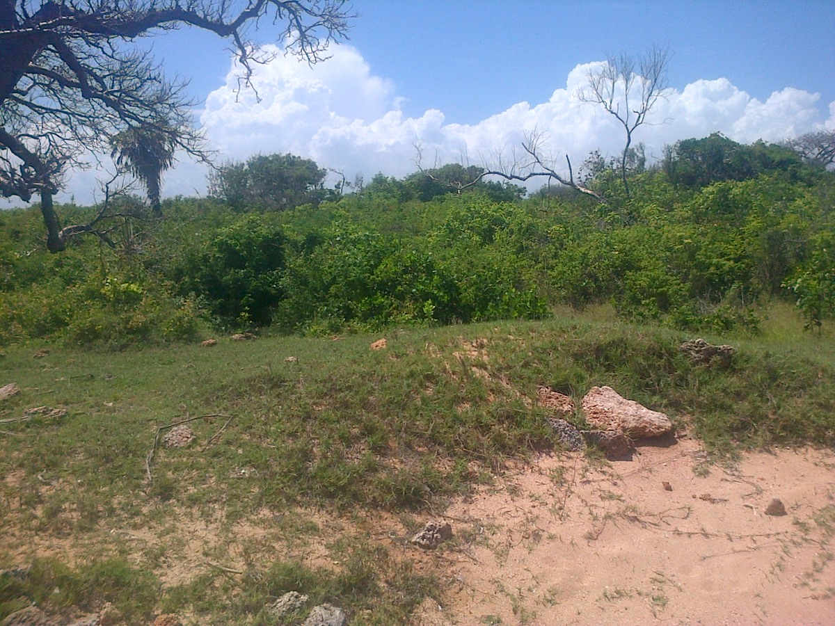 Oceanfront Land for sale in Funzi Island